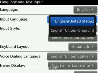 Language & text input setting