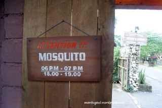 Musim tertentu waspada nyamuk