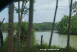 View sungai dari mobil