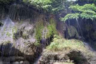 Penuh dengan tanaman pada tebing-tebing Green Canyon