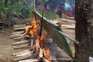 Ini penduduk Sibohe sedang bakar Nasi Lemang untuk acara pernikahan