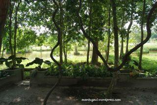 Taman Bougenville Singkawang