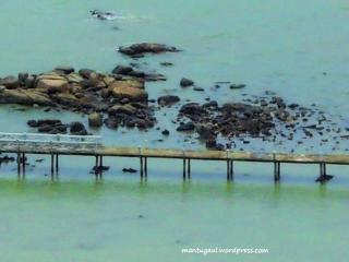Jembatan menuju Pulau terkecil di dunia menurut PBB, Pulau Simbing