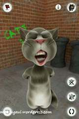 Talking tom, ajak kucing ngomong