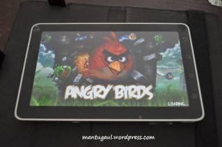 Main angry birds