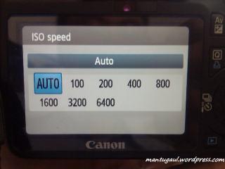 Pengaturan ISO
