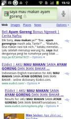 Bisa bahasa indonesia