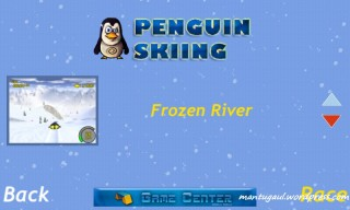 Penguin skiing