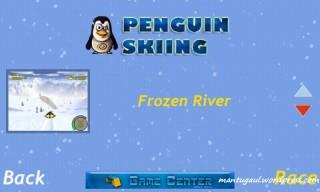 Penguin skiing