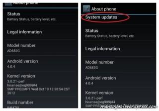 Jika sudah ganti firmware, muncul pilihan system update, lakukan ganti firmware di galeri smartfren