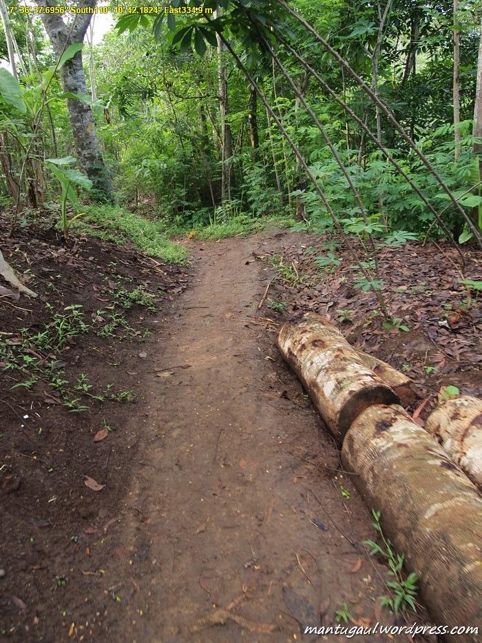 Jalan menuju bukit