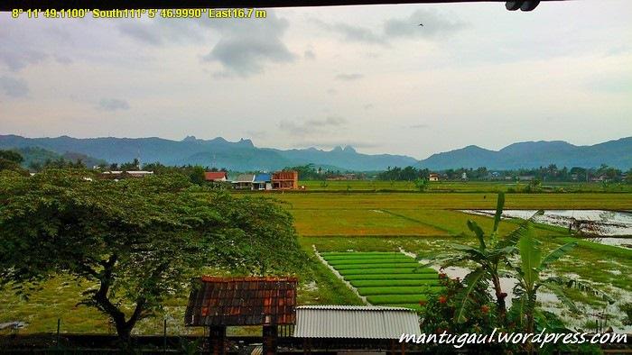 Pemandangan dari kamar hotel Srikandi