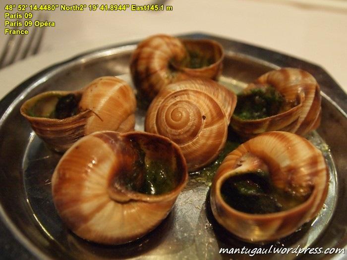 Ini escargot, makanan dari siput impor dari Indonesia