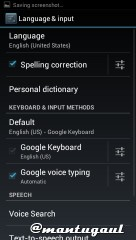 Language & Input